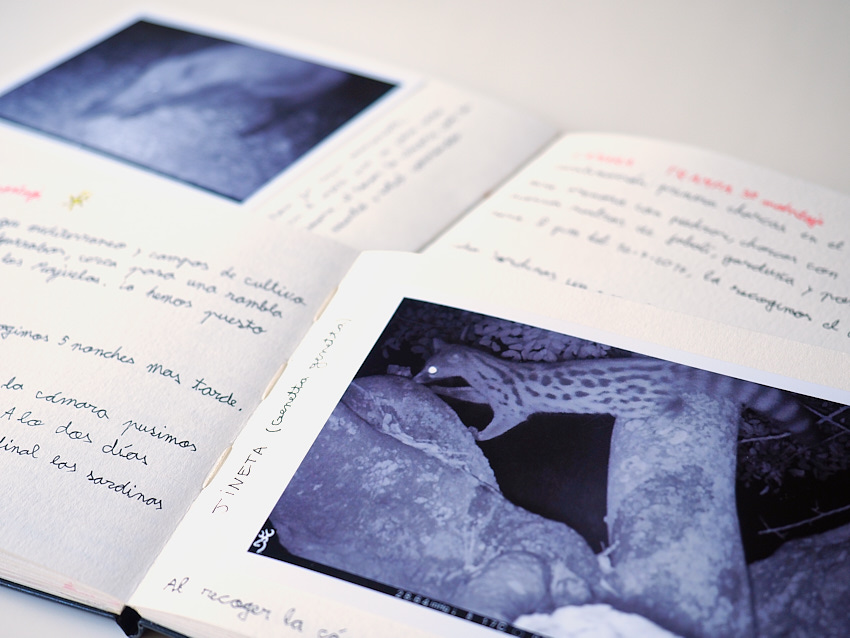 © Daniel Belenguer. Muestra de las páginas con fotograbas de la cámara trampa.