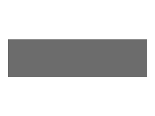 Gray-Standard-_0008_Netflix_2015_logo.png
