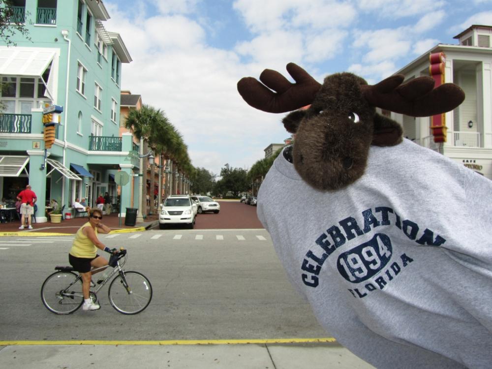 Florida 2011-019 (1000x750).jpg