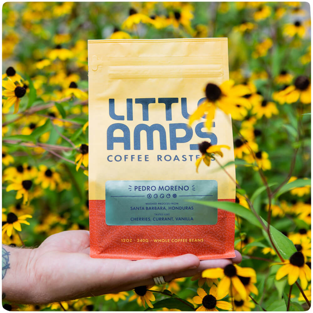 LITTLE AMPS COFFEE -