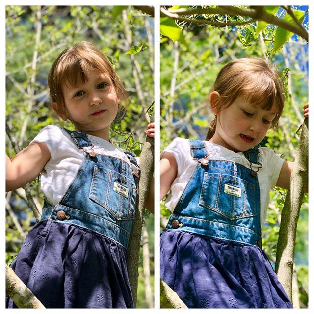My heart, climbing a tree...