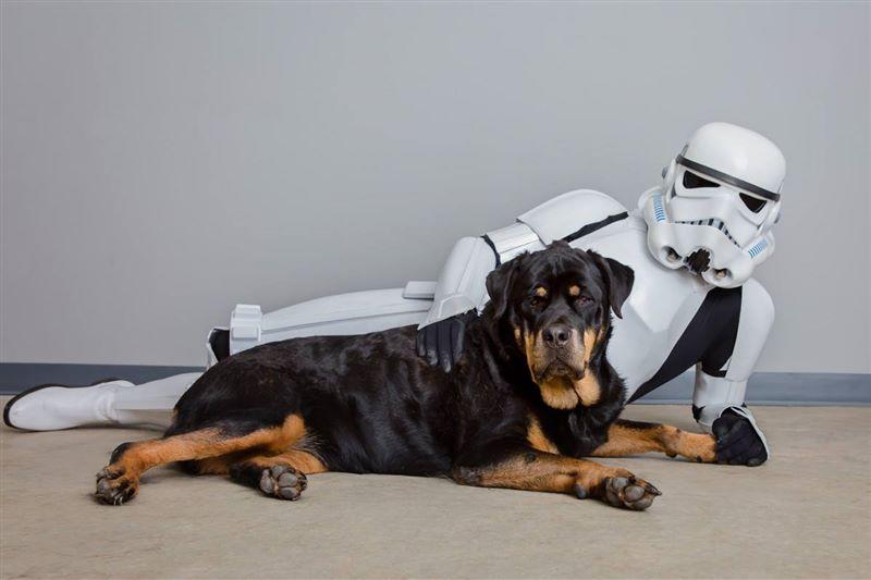 Best-Friends-Animal-Society-adoption-Star-Wars-dog.jpg