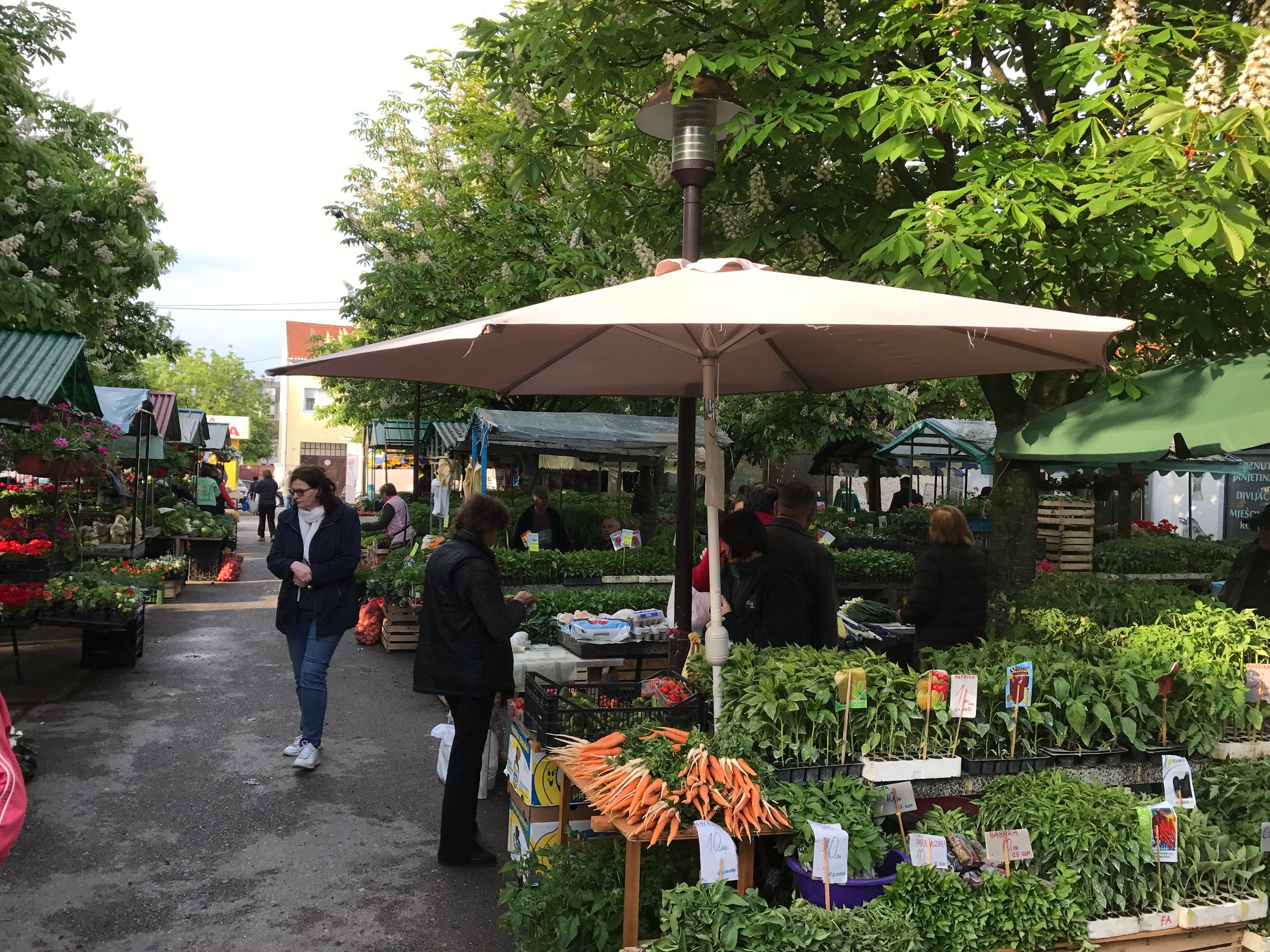 The farmer's market in N. Gradiska