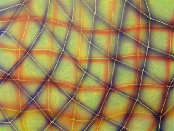 Alisa Ochoa   Buzz , 2013  Acrylic on wood panel  12 x 16 inches