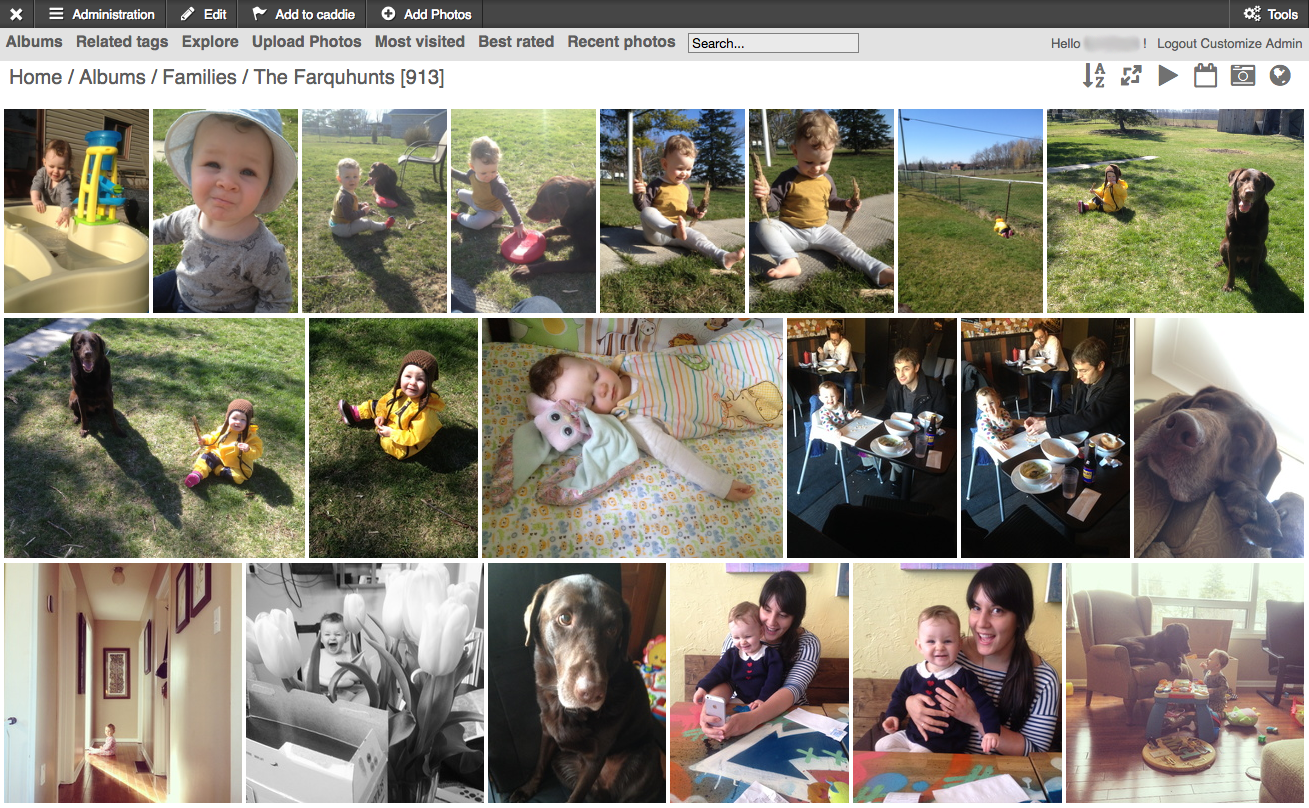 """A Screenshot of one page of our """"Farquhunt"""" Family Album - any shots that contain someone who lives in our house."""