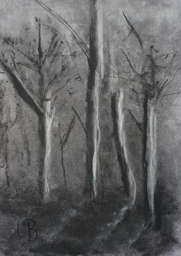Study-for-Silver-Birch.jpg