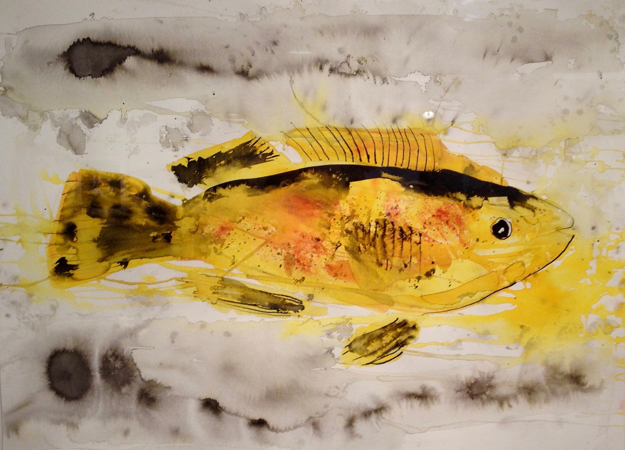 yellow fish in watercolours