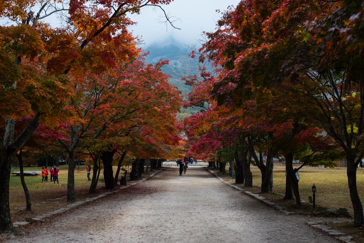 byeonsan-6952.jpg