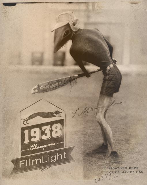 Film light.jpg