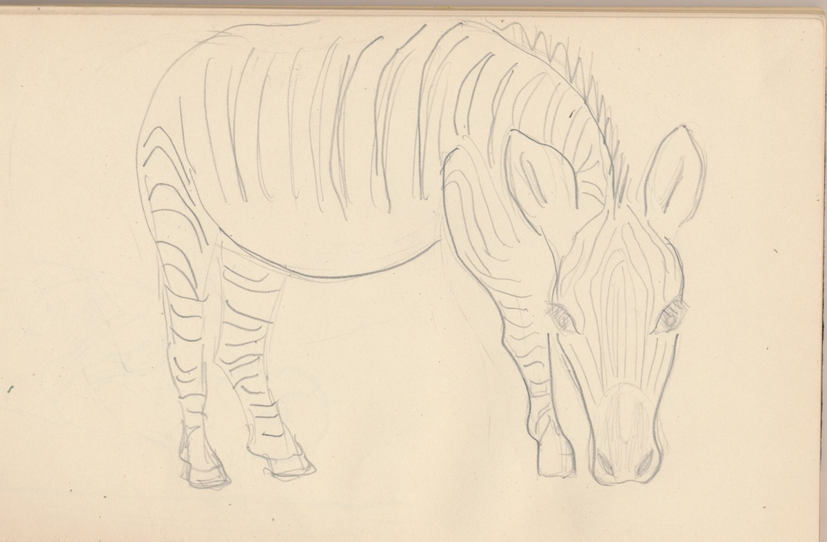 Animals003.jpg