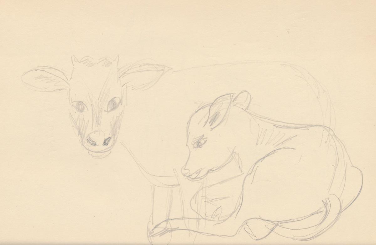 Animals007.jpg