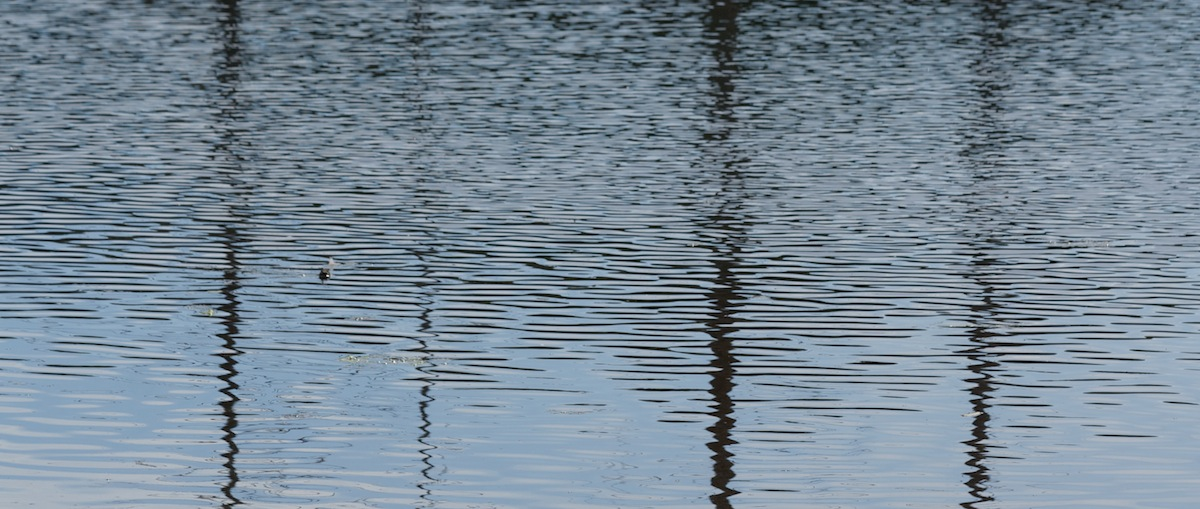 Waterscapes  1161.jpg