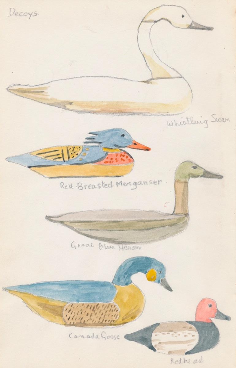Birds003.jpg