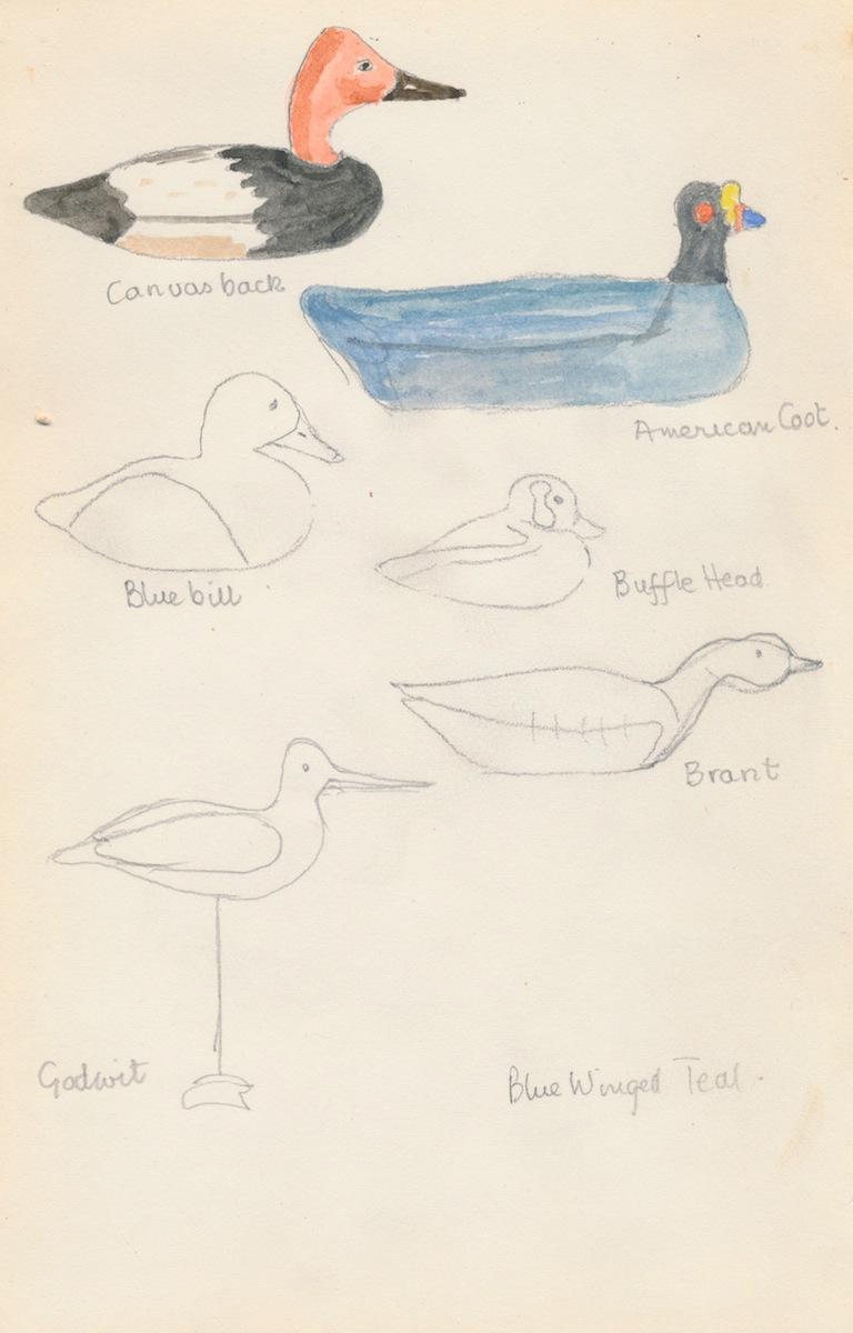 Birds005.jpg