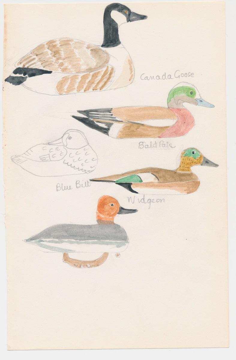 Birds002-2.jpg