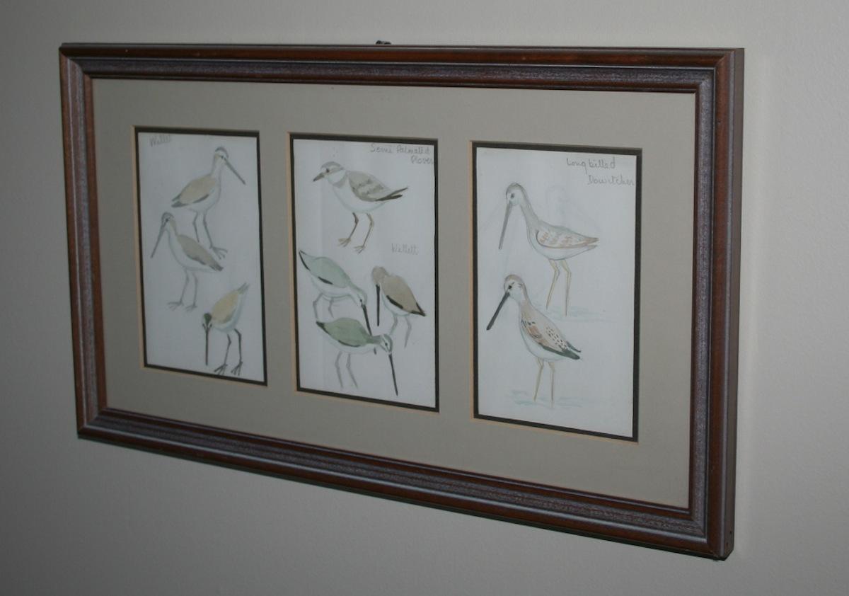 Birds023.jpg