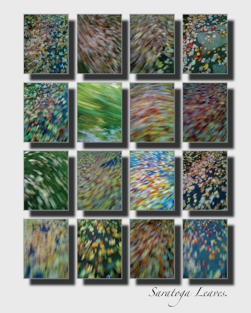 This is a montage of a series of iphone photos of leaves in Saratoga Springs, NY.