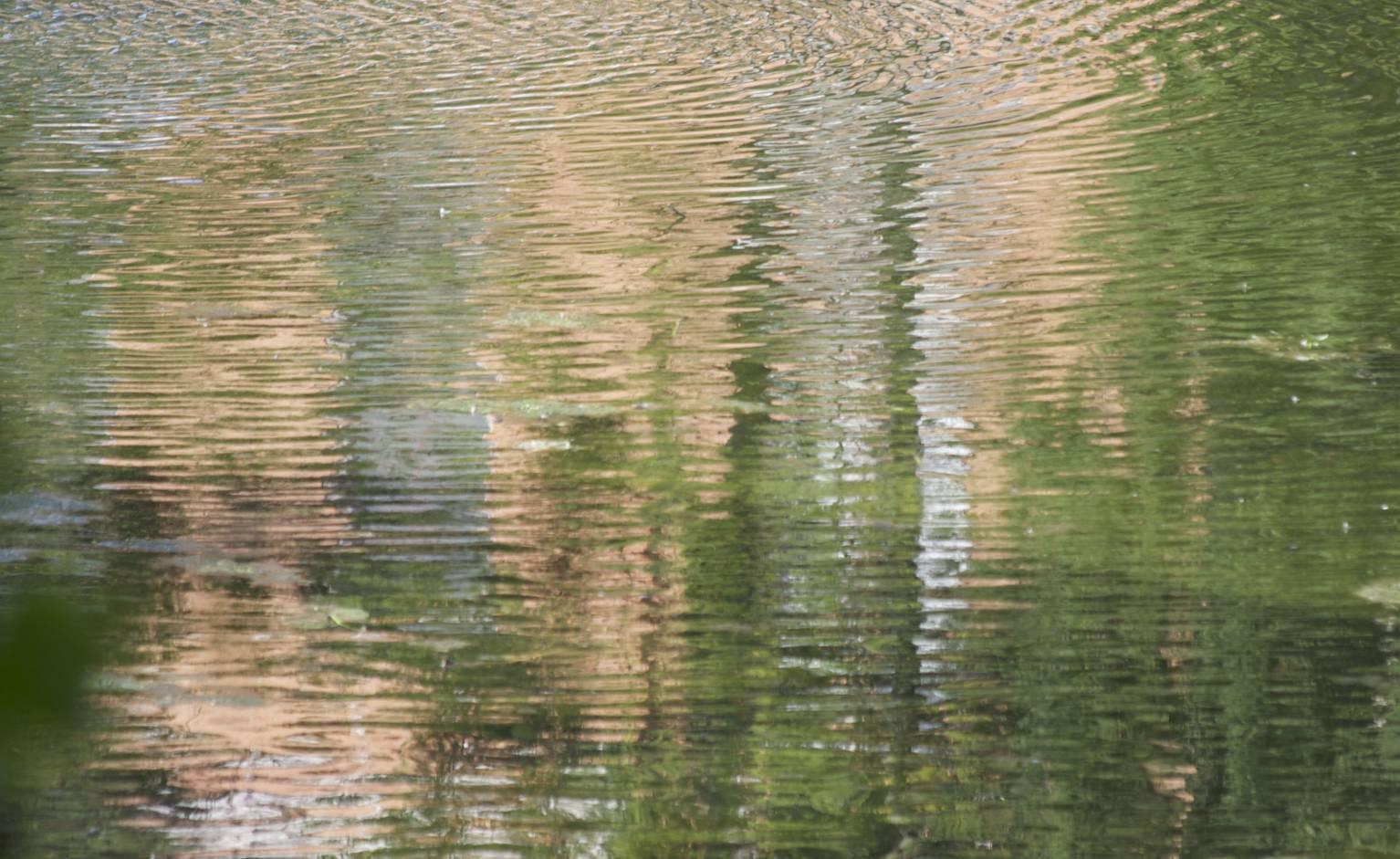 waterscape-adirondack1_original.jpg