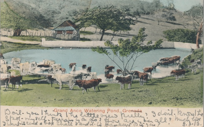 Postcards from Grenada-3a.jpg