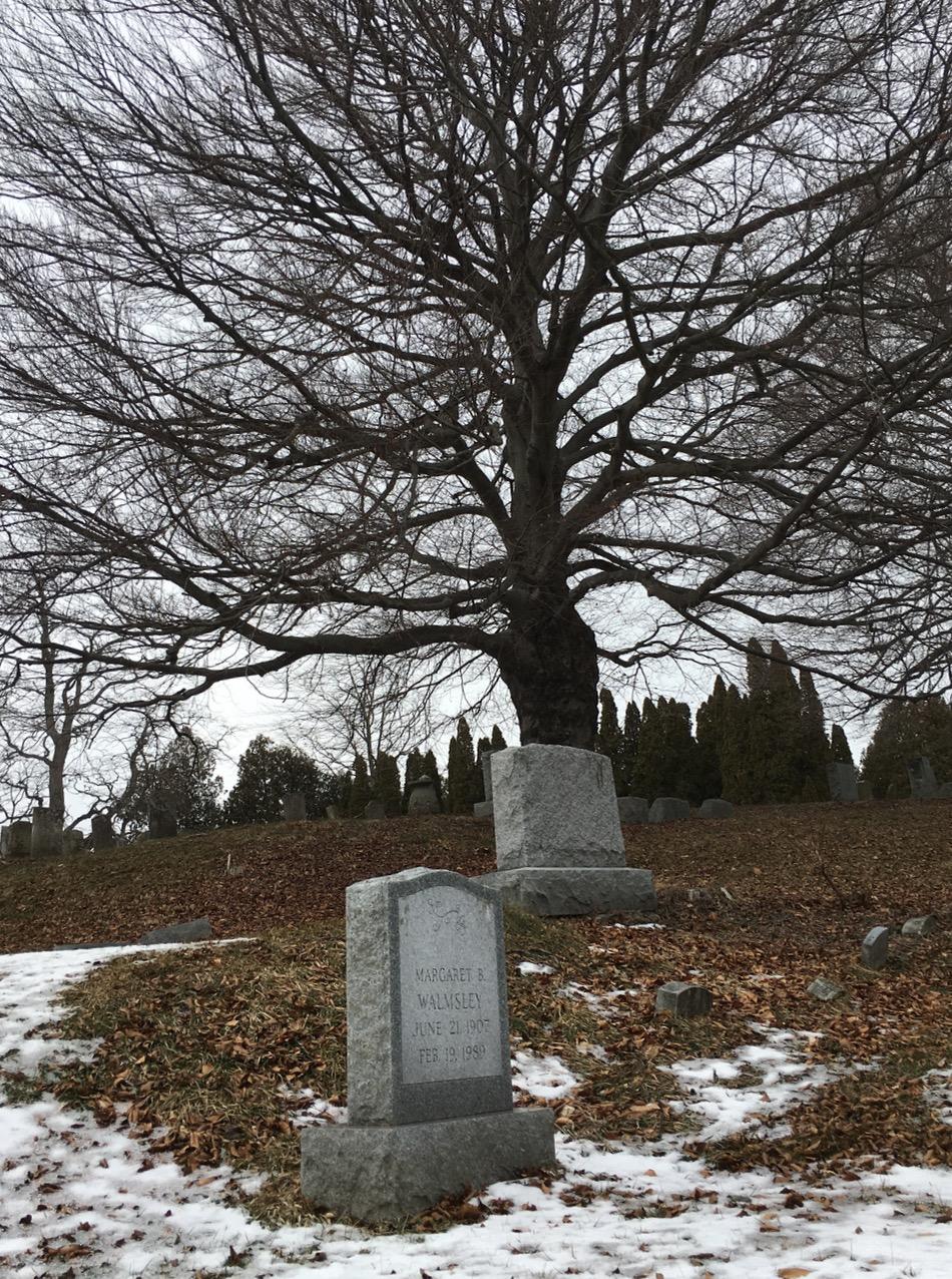 Sweetman Cemetery, Charlton, NY (2/19/15)