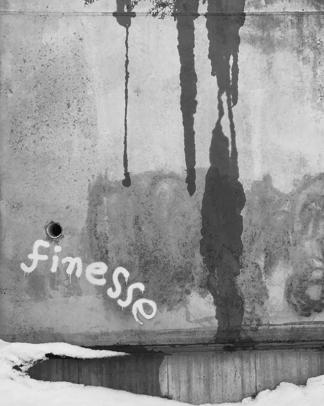 Finesse . iPhone 7+, Saratoga Springs, NY.©2017 Sean Walmsley