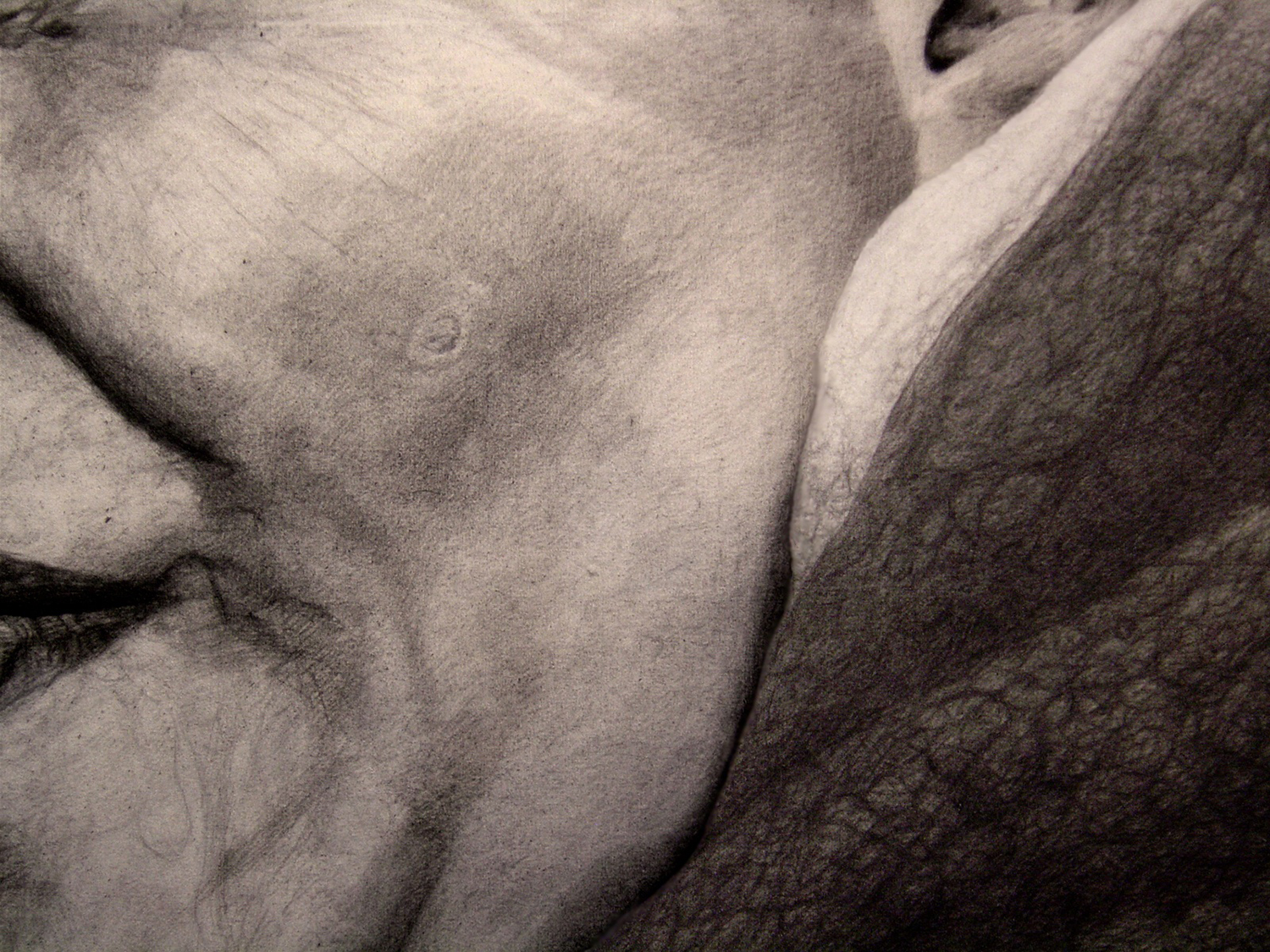 Detail - 6ft x 4ft - pencil on canvas. Private collection.