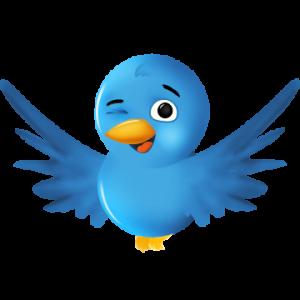 twitter-bird-winking.png