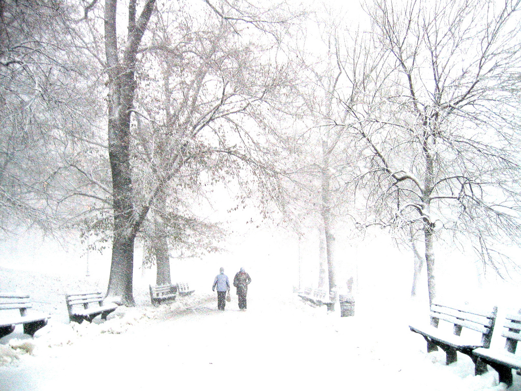 Boston: How it looks in my memory... and also in reality. You're so cold, Boston!