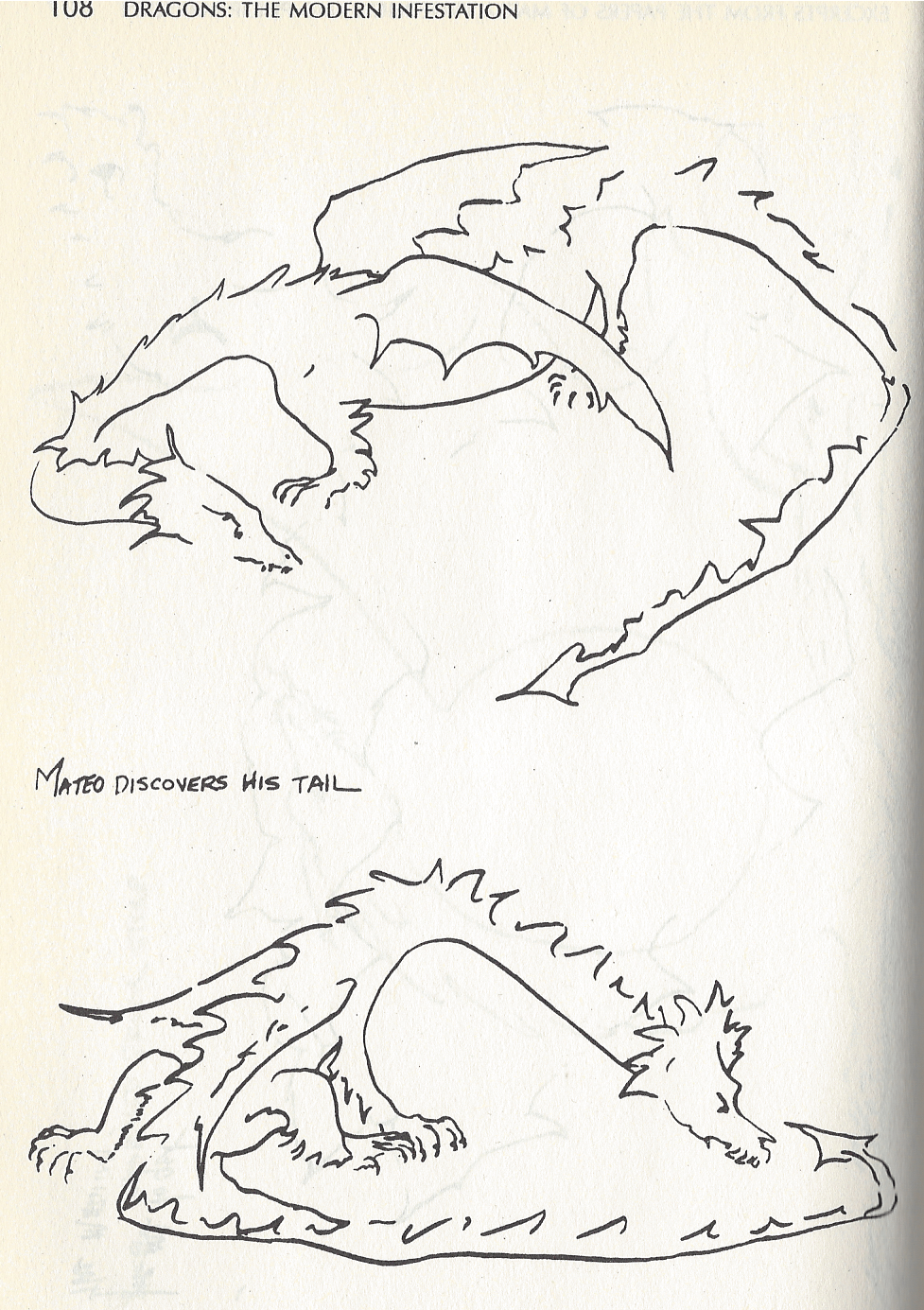 A sketch from Marta Froedlich, a renowned dragon scientist, from her time in Chile observing dragons