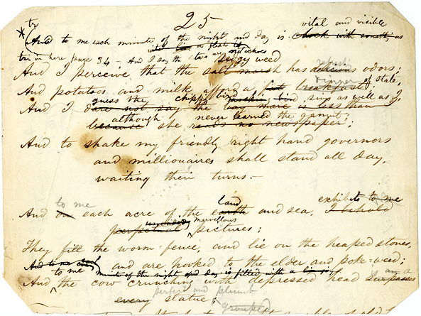 Page from Whitman's   Leaves of Grass   manuscript