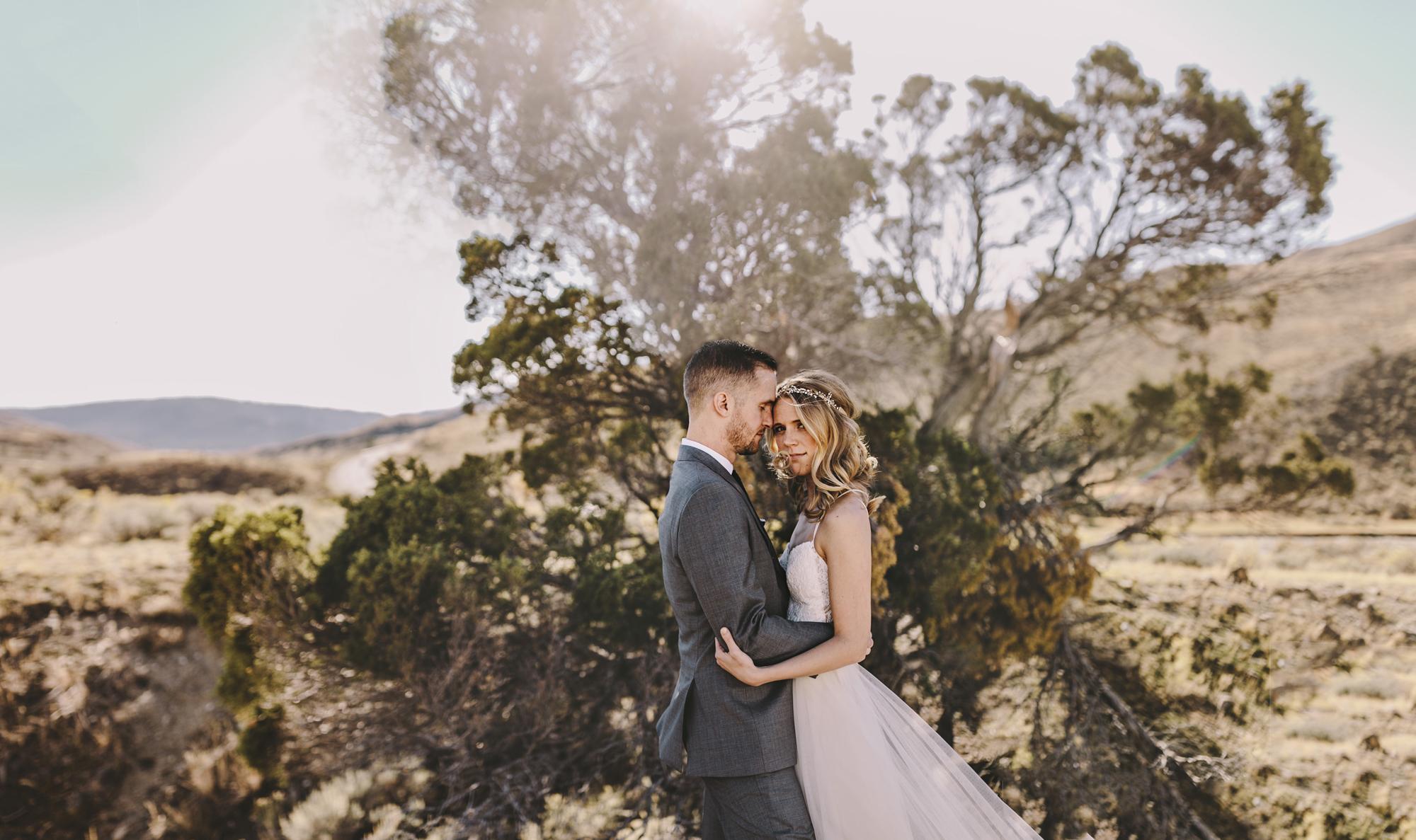 yellowstone national park wedding photographer brandon werth