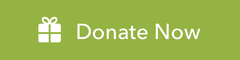 Donate Now Button@2x.png