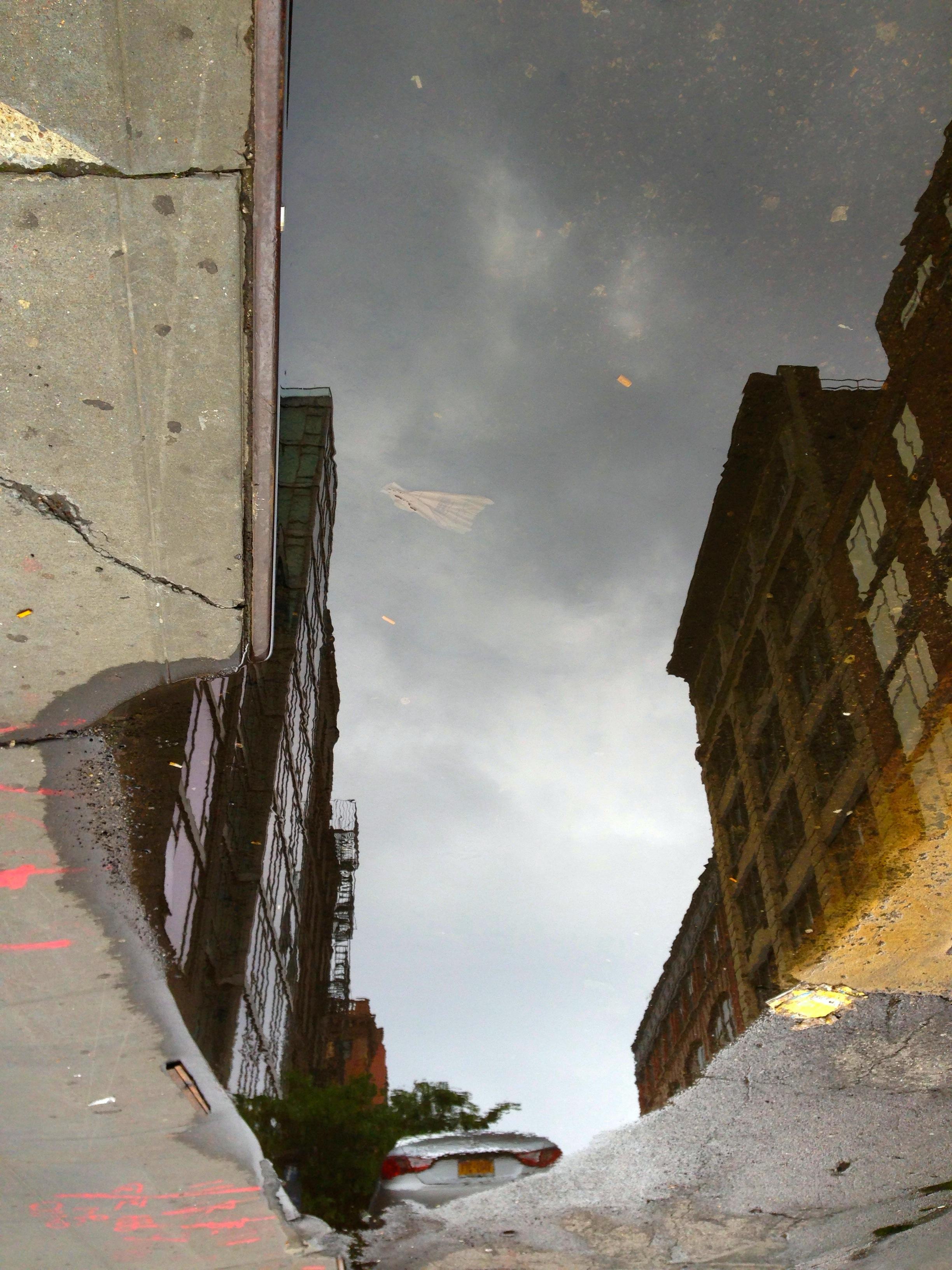 puddle 2.jpg