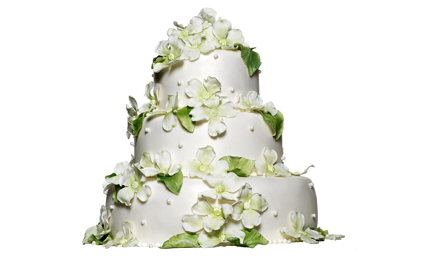 Cake-01C.jpg