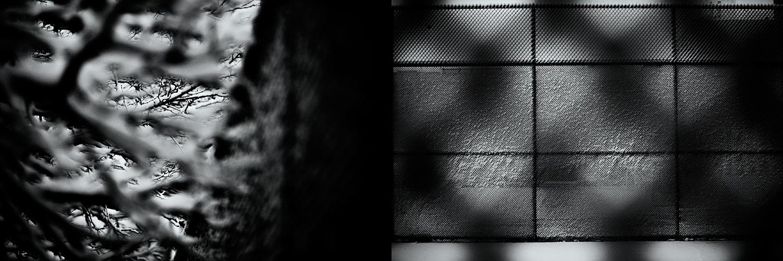 Snow_Fence-02.jpg