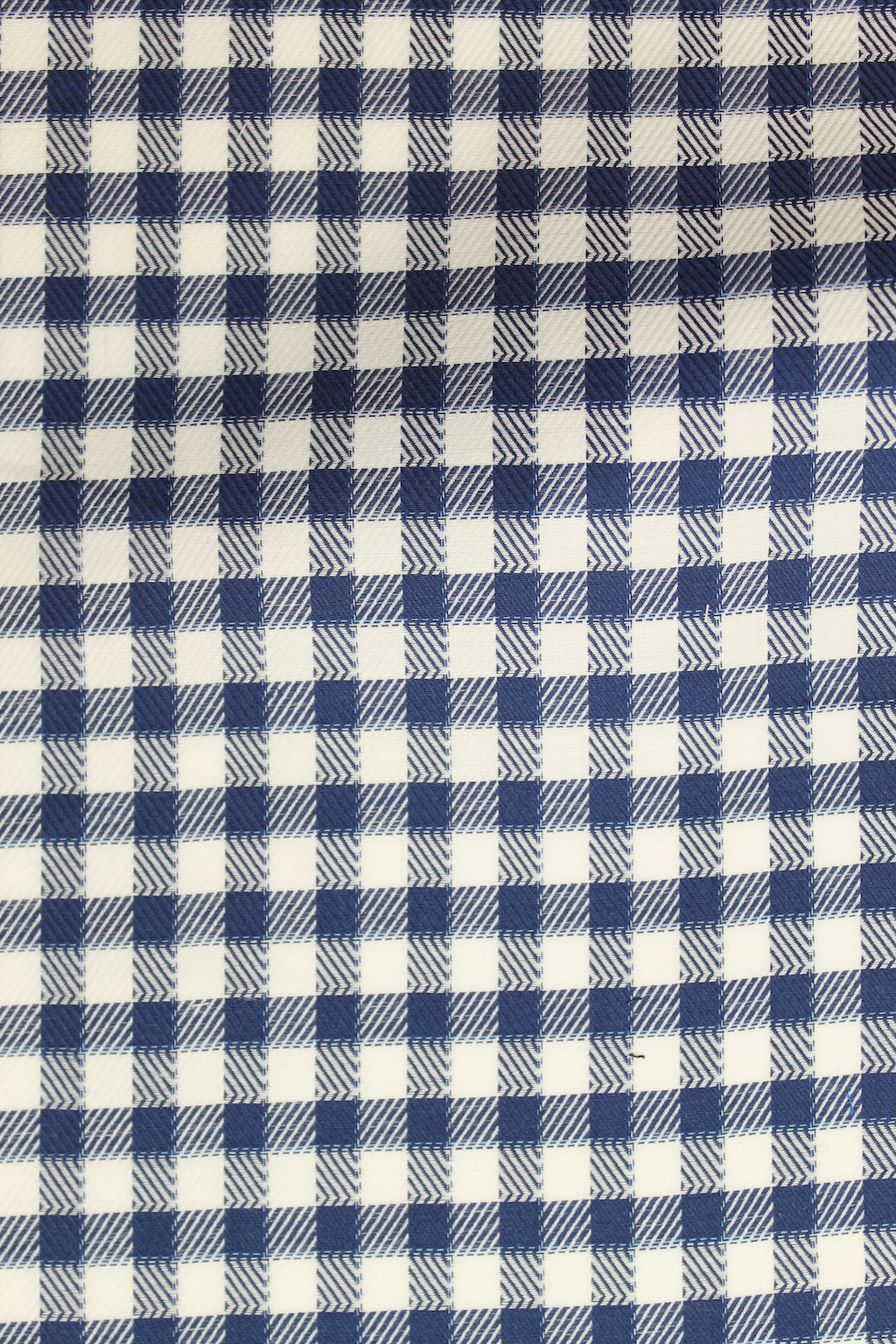 6652 Thick Navy Check.JPG