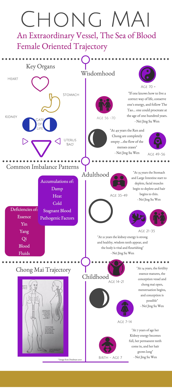 Chang Mai Infographic