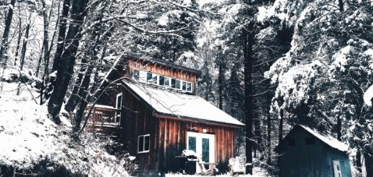 The Cabin / Felicia Sullivan