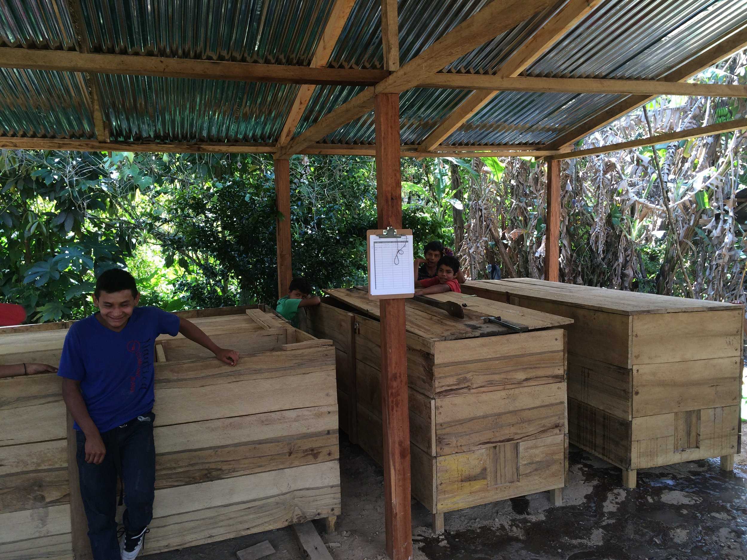 Moving cacao from fermenting box to box