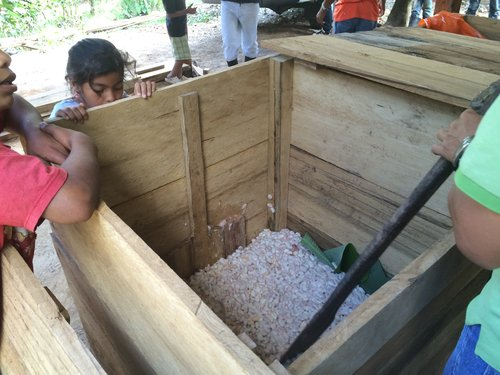 Enliven Cacao ferment 02 AM-2.jpg