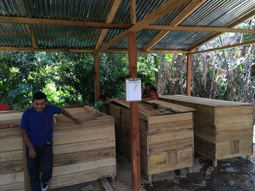 Enliven Cacao ferment 28 AM.jpg