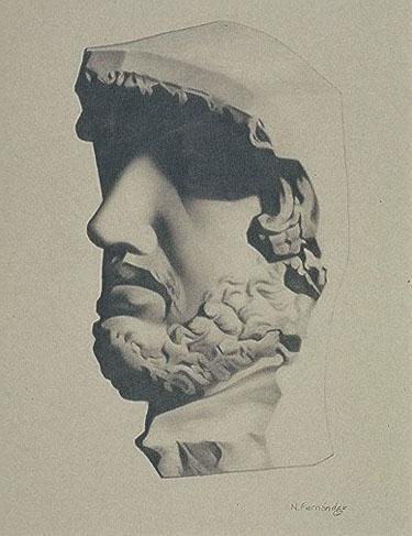 Male Head