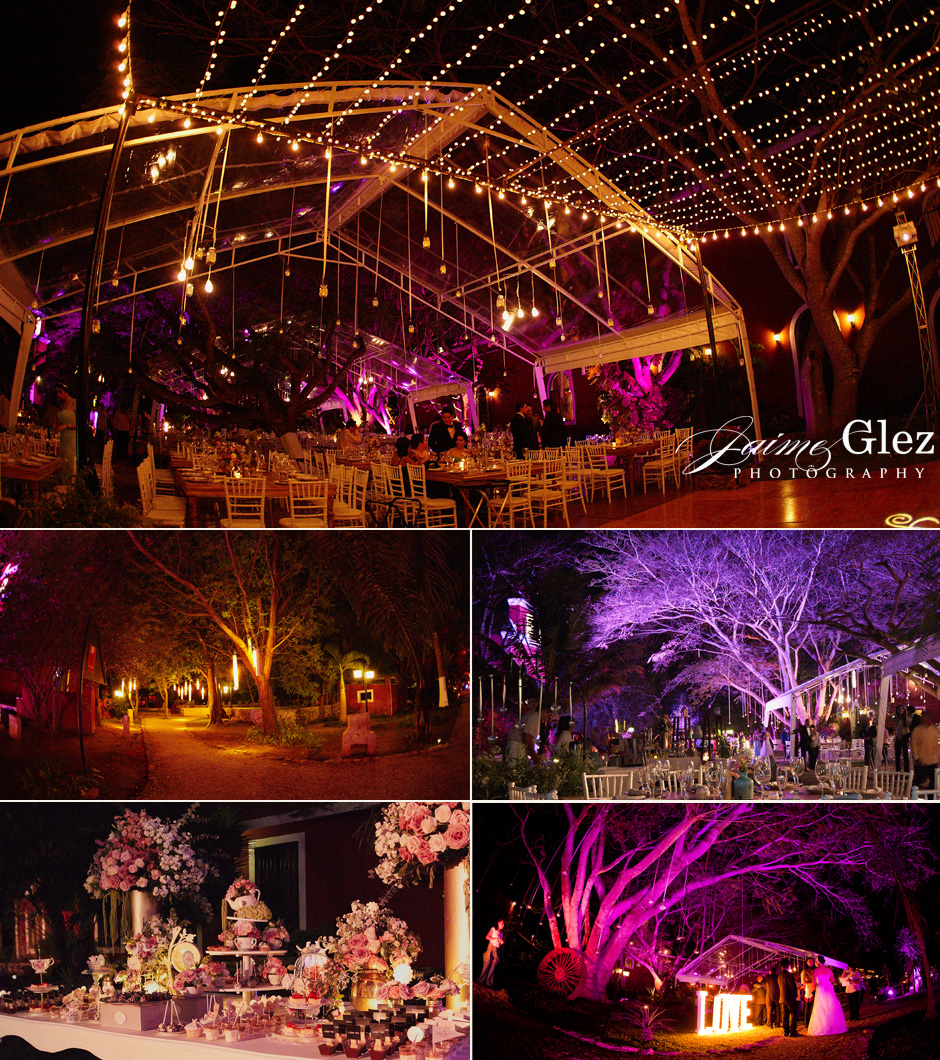 Pink and purple colors lighting made a unique and sweet wedding full of love.