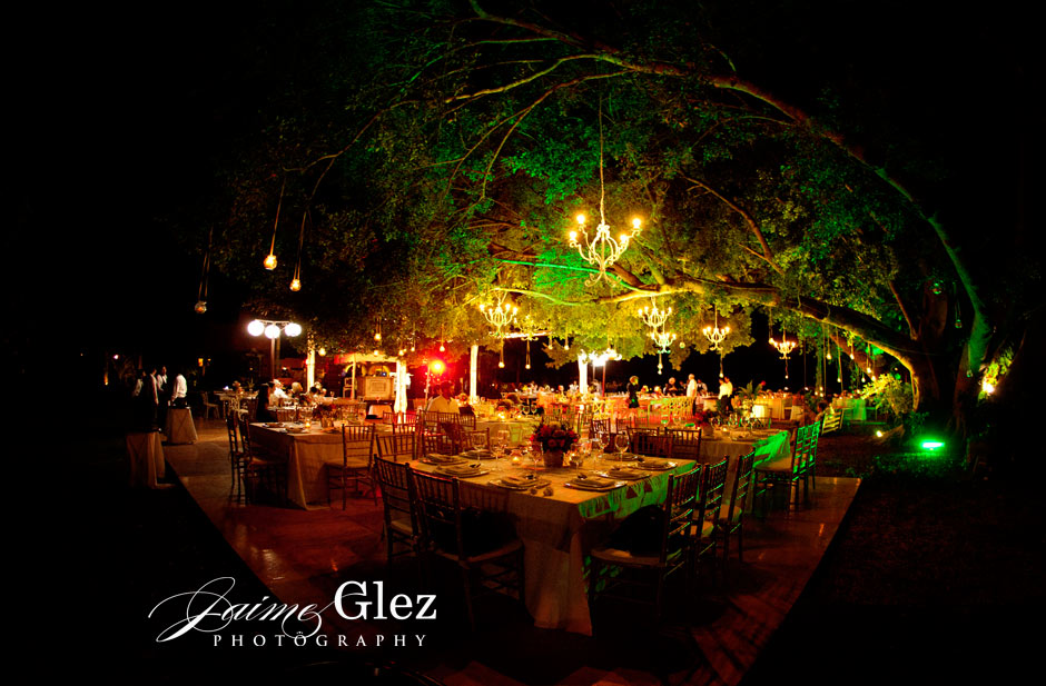 So what do you think to have dinnerunder a tree surrounded by candles ? Isn't romantic?