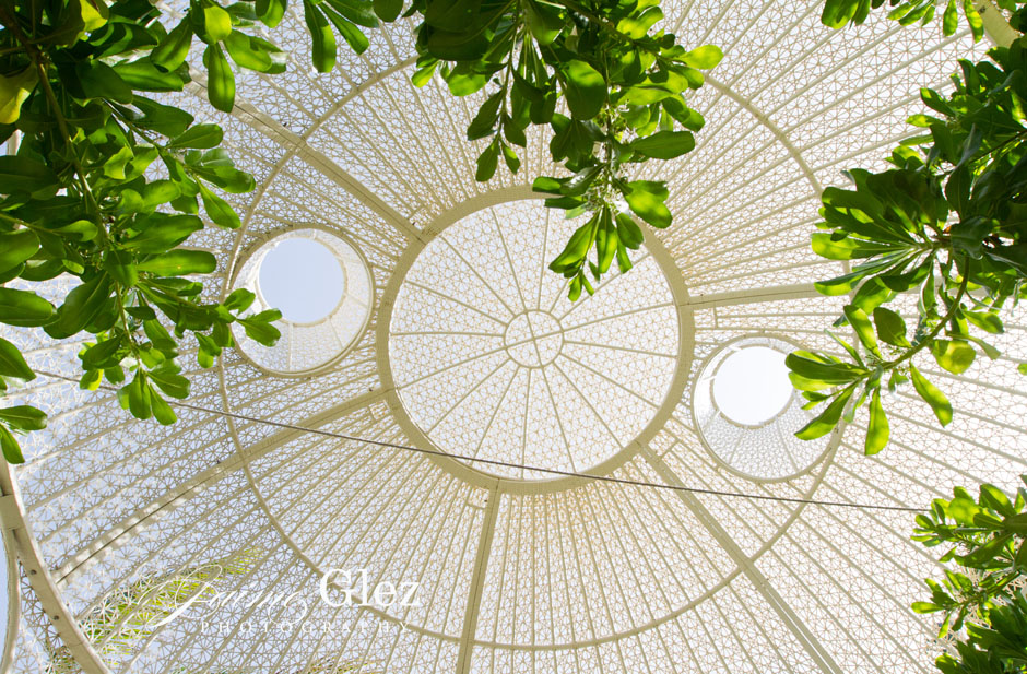 sandos caracol eco resort wedding photos 15