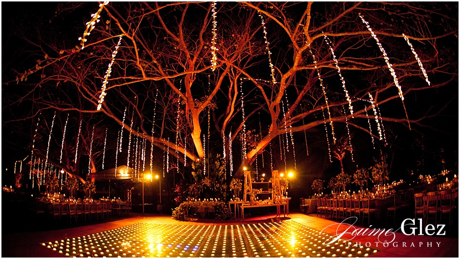 Incredible idea of lighting setup in on the tree! So romantic!