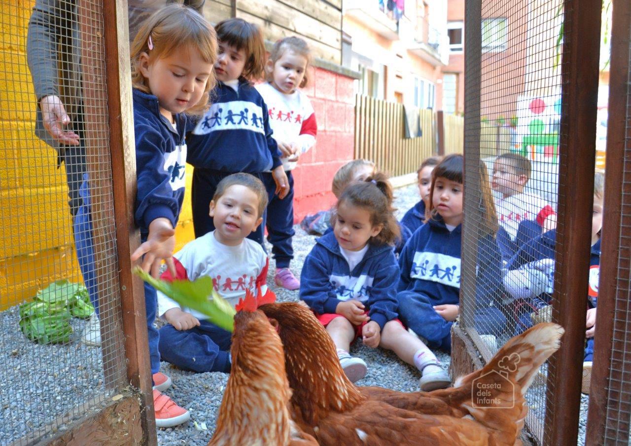 La_Caseta_dels_infants_gallines_08.jpg