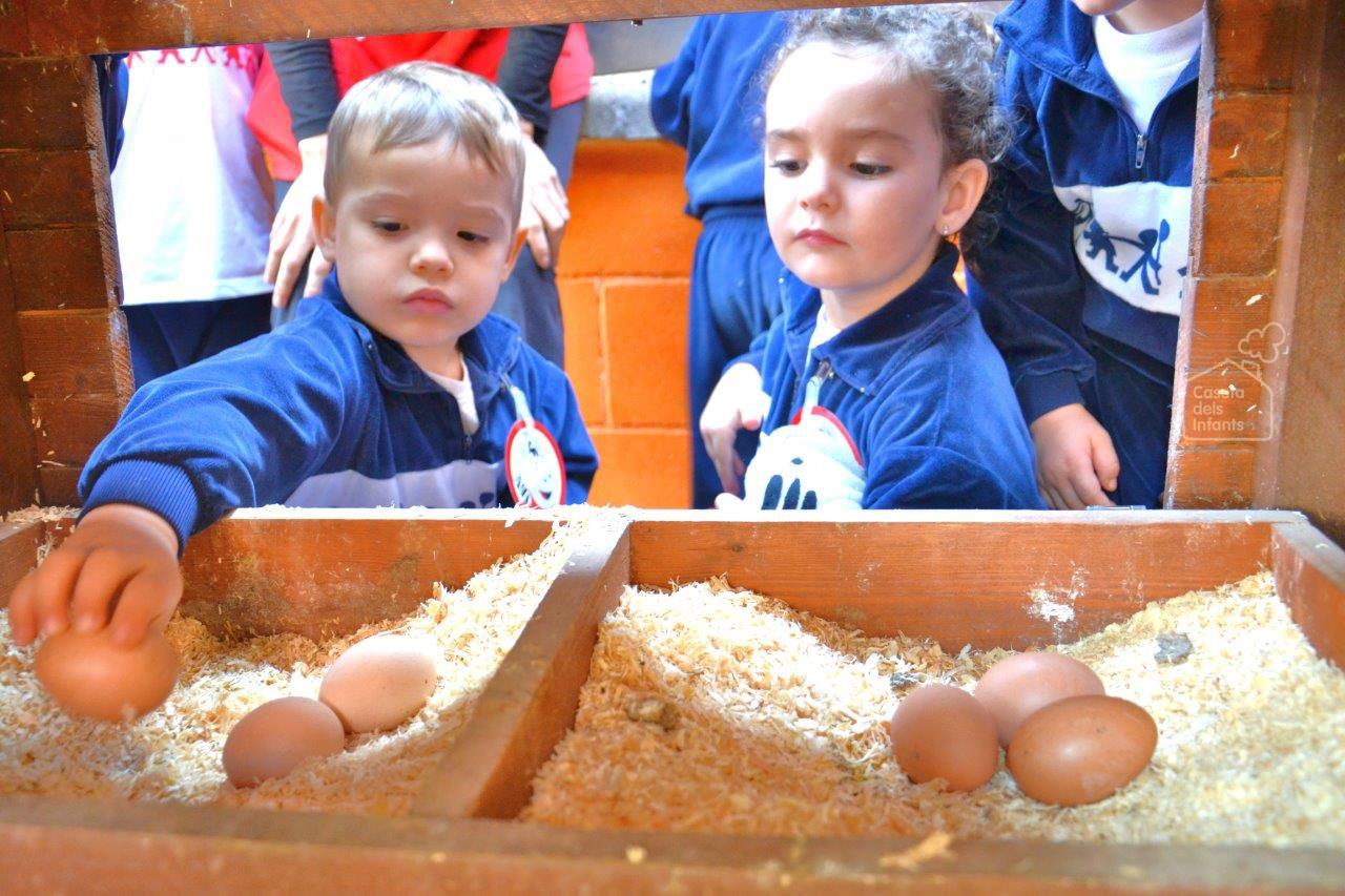 La_Caseta_dels_infants_gallines_09.jpg