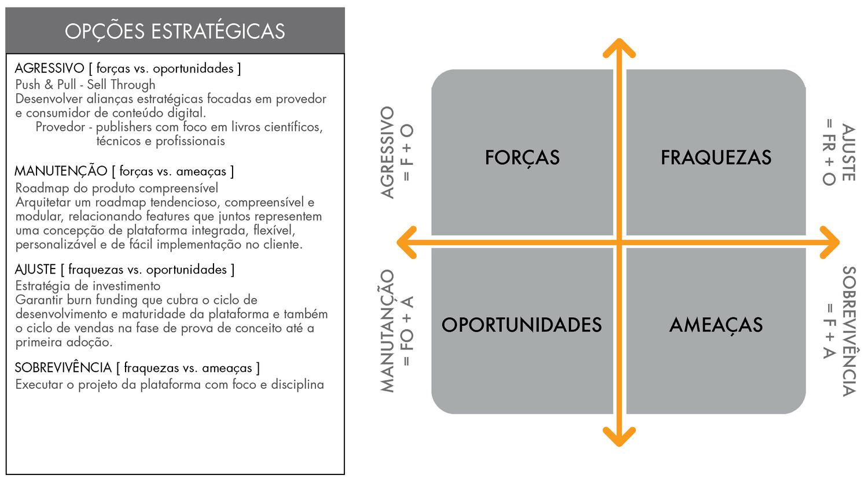 08_Opcoes_Estrategicas.jpg