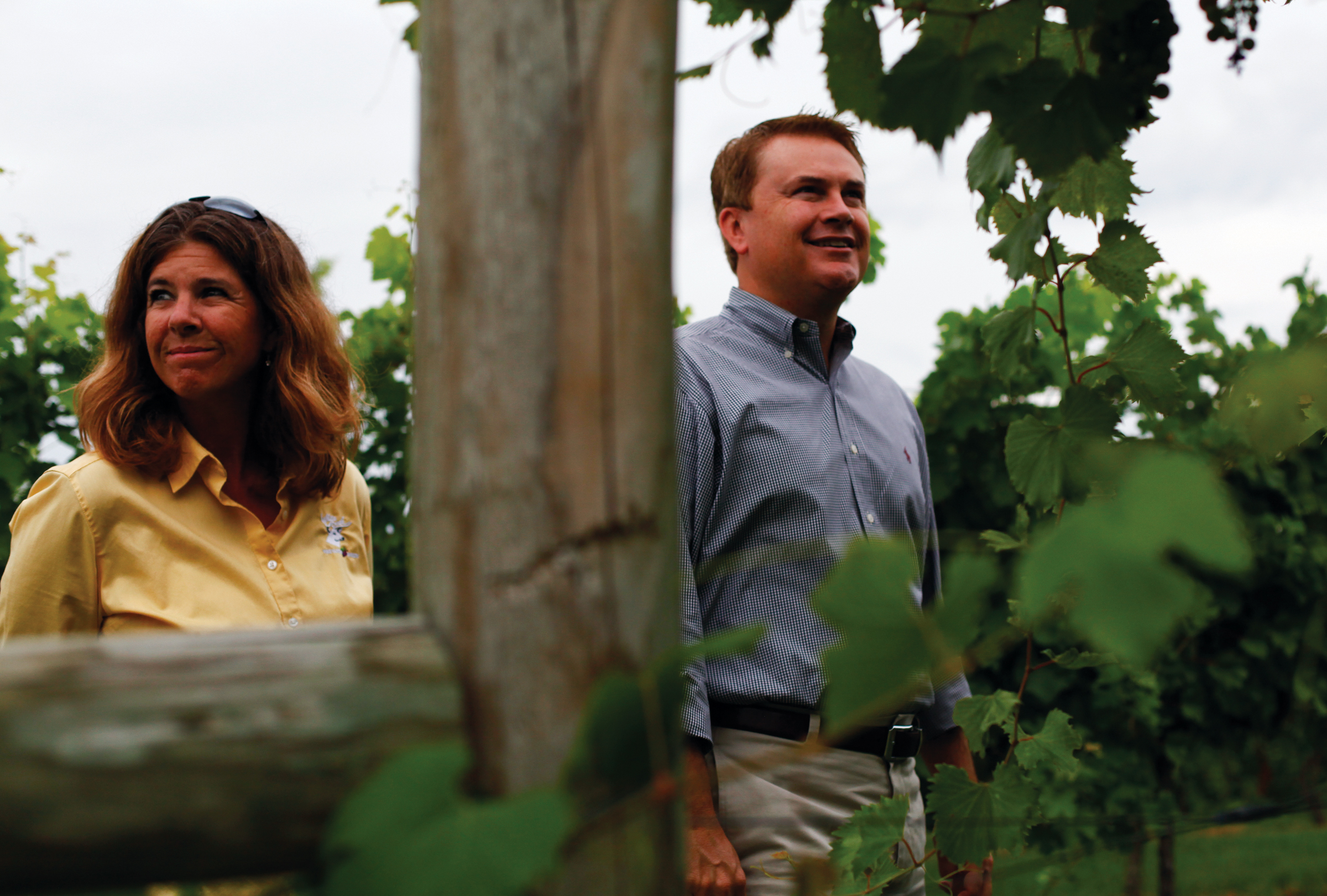"""Jason Comer, Kentucky's Commissioner of Agriculture, right, looks over grape vines at White Buck Vineyards and Winey with owner Carla White. Comer's visit was part of a 13 county tour of agriculture in western Kentucky.                Normal.dotm    0    0    1    31    181    Union County High School    1    1    222    12.0                        0    false          18 pt    18 pt    0    0       false    false    false                                           /* Style Definitions */ table.MsoNormalTable {mso-style-name:""""Table Normal""""; mso-tstyle-rowband-size:0; mso-tstyle-colband-size:0; mso-style-noshow:yes; mso-style-parent:""""""""; mso-padding-alt:0in 5.4pt 0in 5.4pt; mso-para-margin:0in; mso-para-margin-bottom:.0001pt; mso-pagination:widow-orphan; font-size:12.0pt; font-family:""""Times New Roman""""; mso-ascii-font-family:Cambria; mso-ascii-theme-font:minor-latin; mso-fareast-font-family:""""Times New Roman""""; mso-fareast-theme-font:minor-fareast; mso-hansi-font-family:Cambria; mso-hansi-theme-font:minor-latin; mso-bidi-font-family:""""Times New Roman""""; mso-bidi-theme-font:minor-bidi;}"""